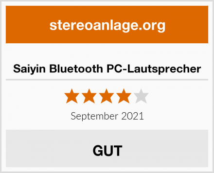 Saiyin Bluetooth PC-Lautsprecher Test